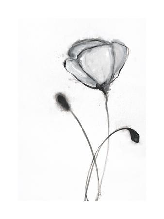 https://imgc.artprintimages.com/img/print/snow-blossom-2_u-l-q1bkjjt0.jpg?p=0