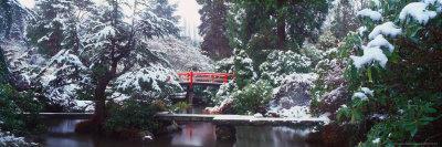 https://imgc.artprintimages.com/img/print/snow-covered-bridge-in-the-kabota-garden-seattle-washington-usa_u-l-p4m2u30.jpg?p=0
