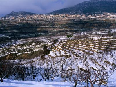 Snow Covered Fields and Village in the Qadisha Valley, Bcharre, Lebanon-Mark Daffey-Photographic Print