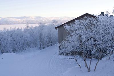 Snow-Covered Scenery, Abisko, Sweden-Natalie Tepper-Photographic Print