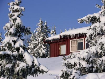 Snow Covered Trees and House, with Icicles, Near Sjusjoen, Lillehammer Area, Norway, Scandinavia-Woolfitt Adam-Photographic Print