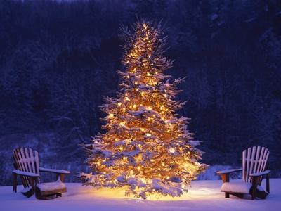 Snow Covering Adirondack Chairs by Lit Christmas Tree-Jim Craigmyle-Premium Photographic Print