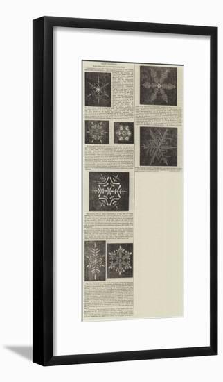 Snow Crystals--Framed Giclee Print