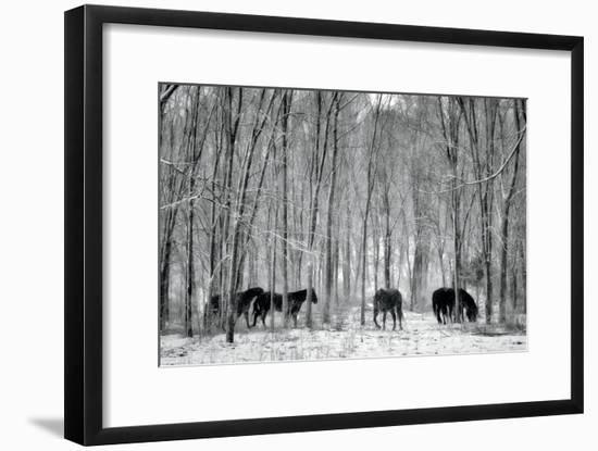 Snow Dancers II-Deb Lee Carson-Framed Photo