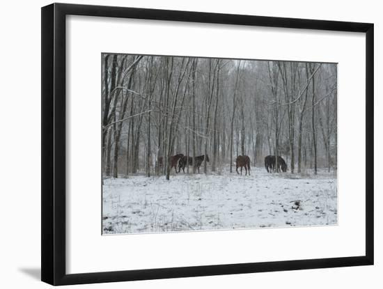 Snow Dancers-Deb Lee Carson-Framed Photo