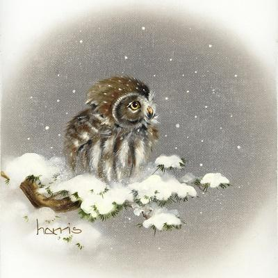 https://imgc.artprintimages.com/img/print/snow-daze_u-l-pyo0nd0.jpg?p=0