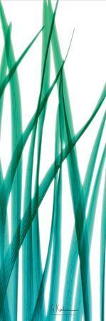 https://imgc.artprintimages.com/img/print/snow-drop-flowing-blue-green-2_u-l-f8j3b30.jpg?p=0