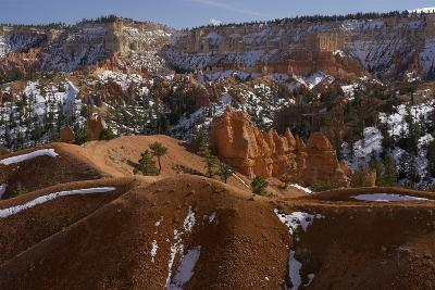 Snow-Dusted Landscape of Hills, Rock Formations and Pine Trees-Norbert Rosing-Photographic Print