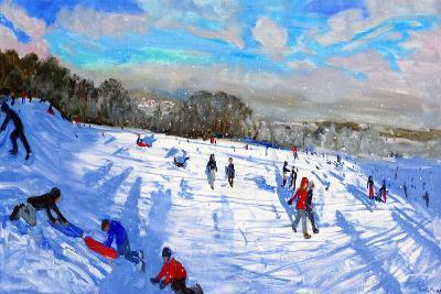Snow Flurries, Allestree Park, Derby-Andrew Macara-Premium Giclee Print