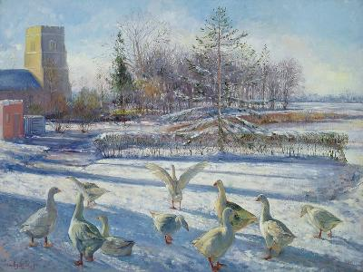 Snow Geese, Winter Morning-Timothy Easton-Giclee Print