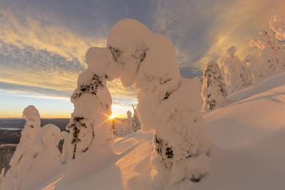 Snow Ghosts in the Whitefish Range, Montana, USA-Chuck Haney-Photographic Print