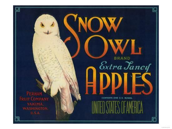 Snow Owl Apple Label - Yakima, WA-Lantern Press-Art Print