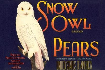 Snow Owl Pear Label--Art Print