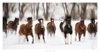 Snow Run I-PHBurchett-Art Print
