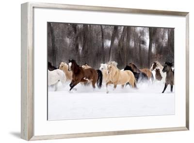 Snow Run II-PHBurchett-Framed Art Print