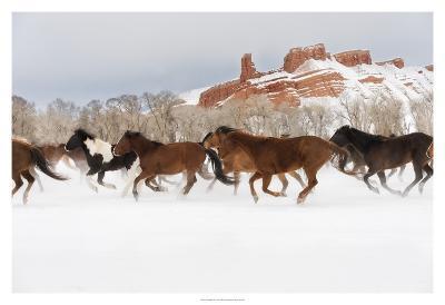 Snow Run III-PHBurchett-Art Print