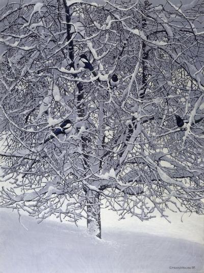 Snow Tree with Magpies-Harro Maass-Giclee Print