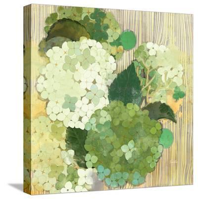 Snowball Bush--Stretched Canvas Print