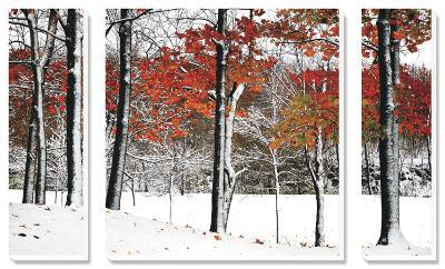 SnowFall-Burney Lieberman-Canvas Art Set