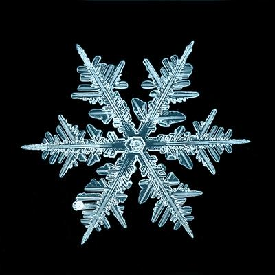 https://imgc.artprintimages.com/img/print/snowflake-isolated-natural-crystal_u-l-q1a3t4z0.jpg?p=0
