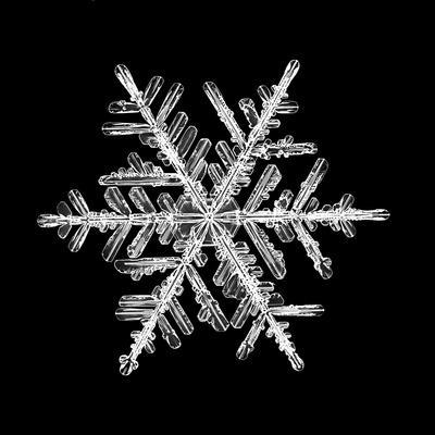https://imgc.artprintimages.com/img/print/snowflake-isolated-on-a-black-background-natural_u-l-q1h5r7b0.jpg?p=0