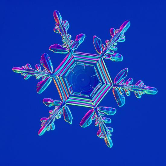 Snowflake-Kenneth Libbrecht-Photographic Print