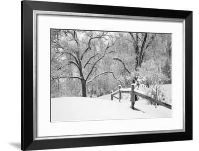 Snowscape, Farmington Hills, Michigan '08-Monte Nagler-Framed Photographic Print