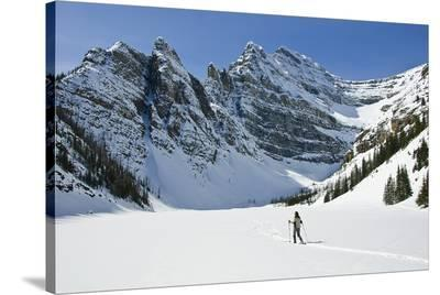 Snowshoeing in Banff Natl Park--Stretched Canvas Print