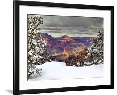 Snowy Grand Canyon I-David Drost-Framed Photographic Print