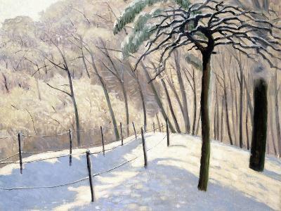 Snowy Landscape in Bois De Boulogne; Paysage De Neige Au Bois De Boulogne, 1905-Felix Edouard Vallotton-Giclee Print