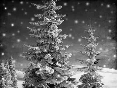https://imgc.artprintimages.com/img/print/snowy-night_u-l-f9a7cj0.jpg?p=0