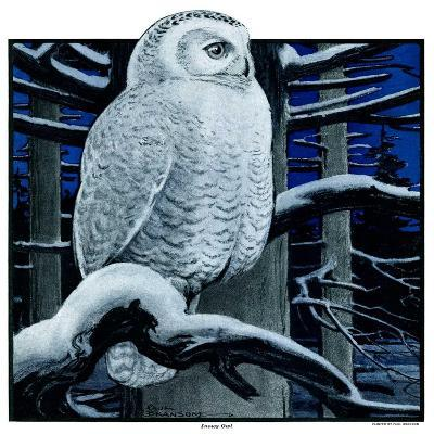 """""""Snowy Owl in Forest at Night,""""January 12, 1924-Paul Bransom-Giclee Print"""
