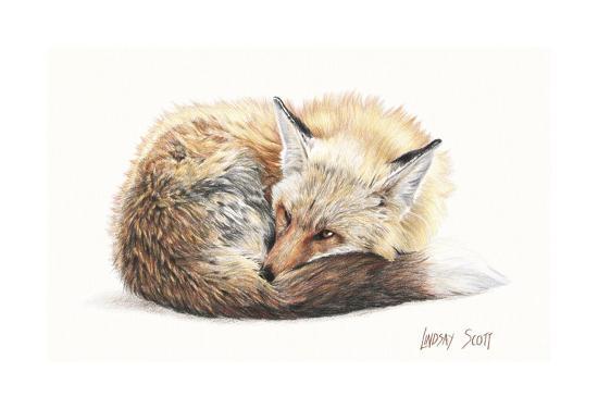 Snuggled Up-Lindsay Scott-Art Print