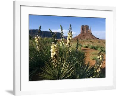 Soapweed Yucca. Monument Valley Navajo Tribal Park, Arizona, Usa 2007-Philippe Clement-Framed Photographic Print