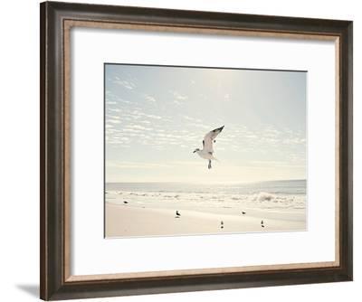 Soar-The Gingham Owl-Framed Art Print