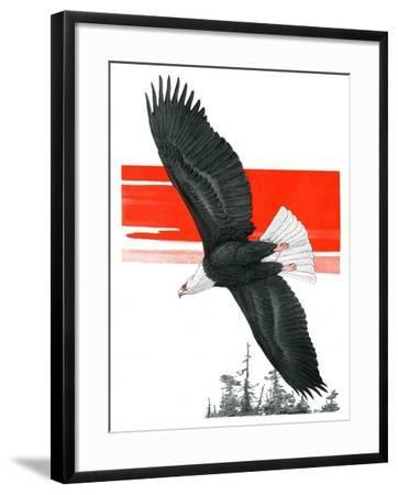 """Soaring Eagle,""March 22, 1924-Charles Bull-Framed Giclee Print"