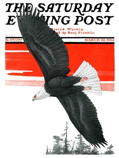 """Soaring Eagle,"" Saturday Evening Post Cover, March 22, 1924-Charles Bull-Giclee Print"