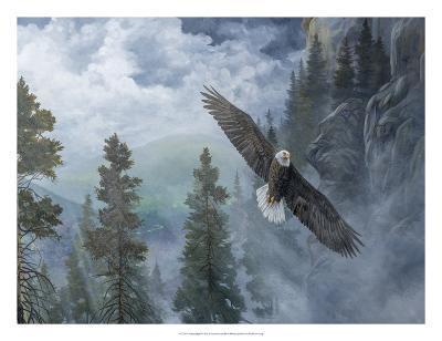 Soaring High II-B^ Lynnsy-Art Print