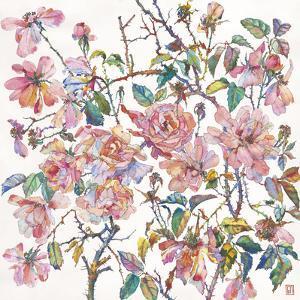 Climbing Roses by Sofia Perina-Miller