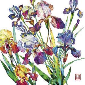 Irises by Sofia Perina-Miller