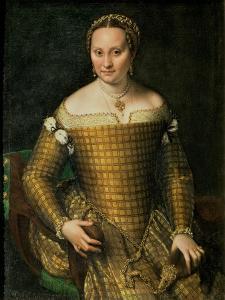 Portrait of the Artist's Mother, Bianca Ponzoni Anguisciola, 1557 by Sofonisba Anguisciola