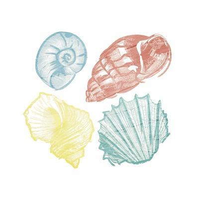 https://imgc.artprintimages.com/img/print/soft-color-shells-mate_u-l-q1bbynk0.jpg?p=0