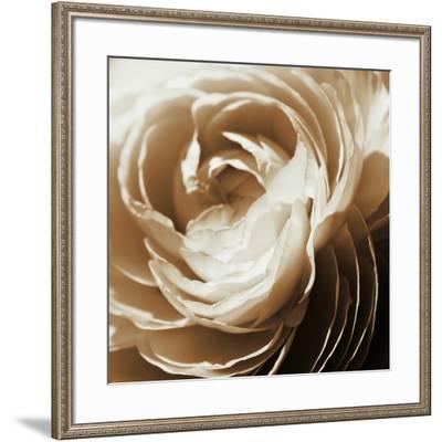 Soft Edges-Jennifer Broussard-Framed Art Print