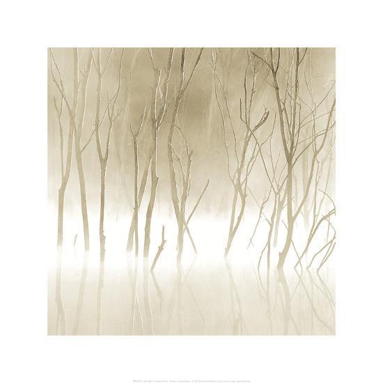 Soft Light II-Adam Brock-Art Print