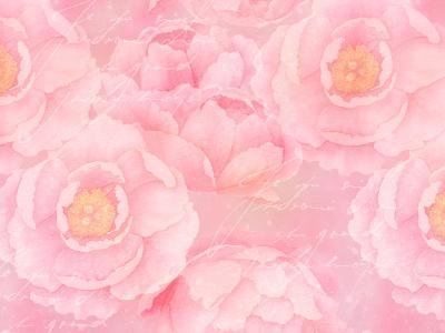 Soft Pink Rose Watercolor-Lebens Art-Art Print