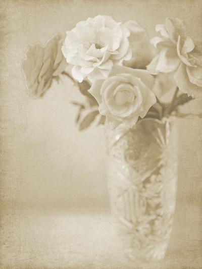 Soft Roses I-Shana Rae-Giclee Print