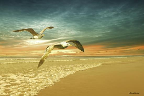 Soft Sunrise on the Beach 6-Carlos Casamayor-Giclee Print