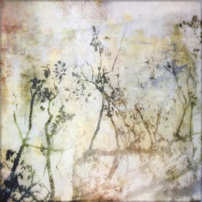 Softly into Spring-Christine O'Brien-Giclee Print