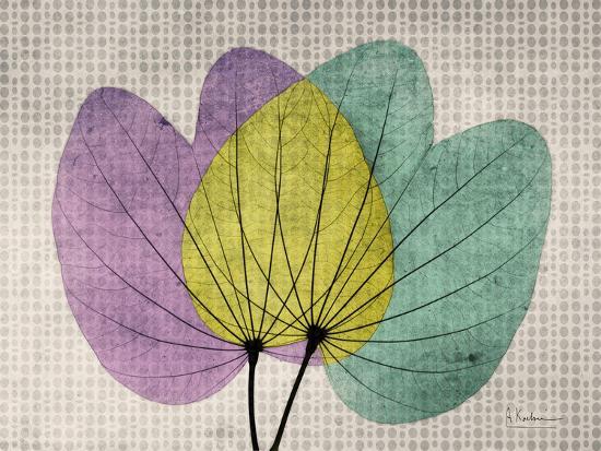 SoHo Orchid 1-Albert Koetsier-Premium Giclee Print