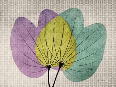 https://imgc.artprintimages.com/img/print/soho-orchid-1_u-l-pyjqq90.jpg?p=0